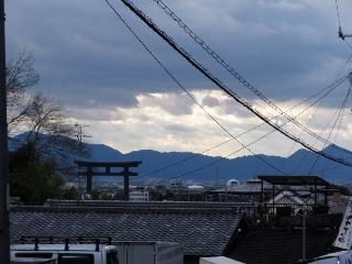 0106-11-miwa.jpg
