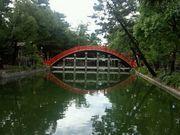 0107-11-sumi.jpg