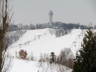 0225-03-snow.jpg