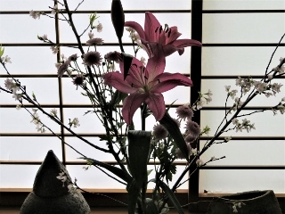 0325-04-flower.jpg