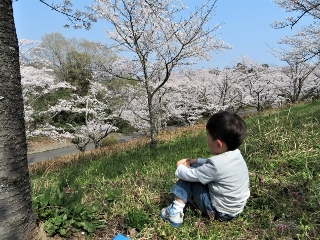0409-03-hashi.jpg
