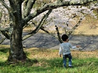 0410-05-hashi2.jpg