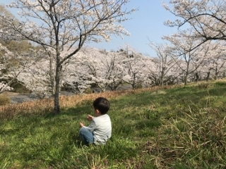 0410-06-hashi2.jpg
