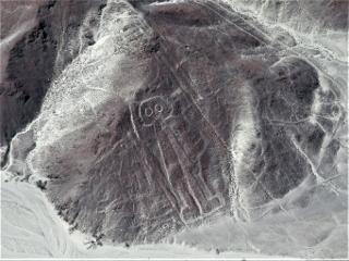 0705-04-nazca2.jpg