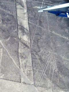 0705-17-nazca2.jpg