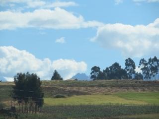 0711-09-cuzco-ollan.jpg