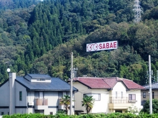 1127-05-takao.jpg