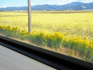 1127-08-takao.jpg